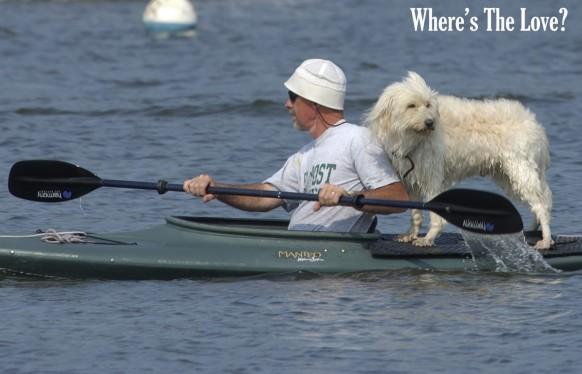 dog-paddle